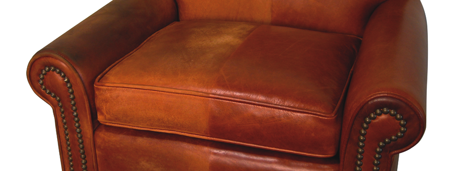 Ecopro Delivers Best Leather Cleaning Results Using Only Professional Cleaners
