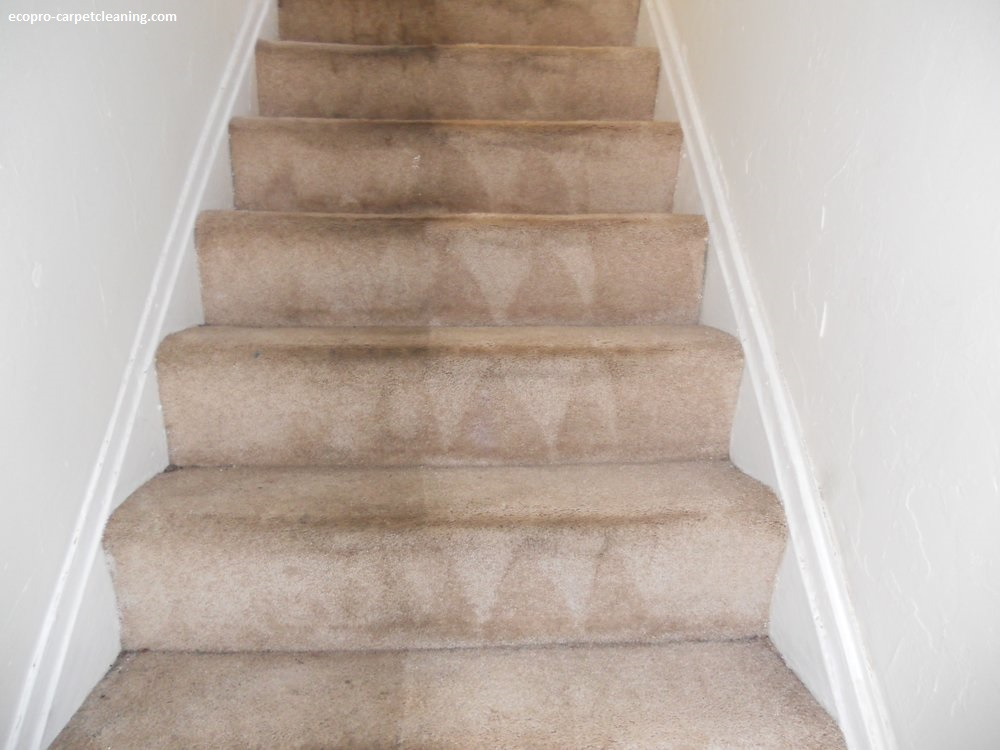 Carpet Cleaning Ecopro Carpetcleaning